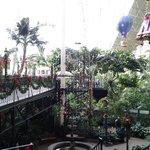 Inside one of the atriums