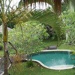 Piscine de la villa des rizières