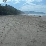 Playa Hermosa -- just a two minute walk down the road from Shaka.