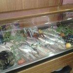 foto esposizione pesce