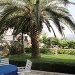 Villa Makoc garden