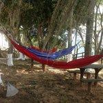 Super relax ..en la zona de hamacas.