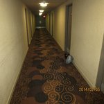 hallway with garbage outside