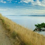 Hike From Fort Ebey State Park