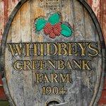 GreenBank Farm Whine Tasting