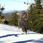 More skiing with Woolly