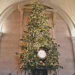 Christmas tree at The Wolseley