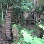 A centuries-old sugar mill, gently aging into the forest, is an historical highlight