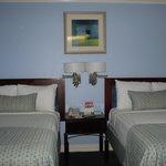 Comfy Beds : )