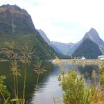 Milford Sound, don't miss