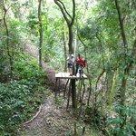 Zip lining with Jungle Top Adventures