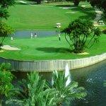 Crowne Plaza Ft Lauderdale Hotel Golf