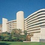Photo of Ibusuki Iwasaki Hotel