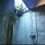 open air bathroom - and no creepy crawlies