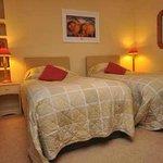 Twin room -  Bed & Breakfast