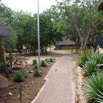 l'accès aux bungalows