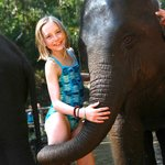 a day with elephants