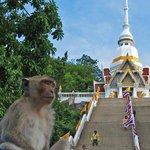 Kha Takiab Mount Wat (Temple)