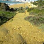 steep path down to the beach