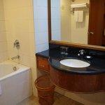 Bathroom view - bathtub needs upgrading
