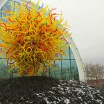 Chihuly Glass + Garden