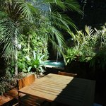The back garden with small plunge pool