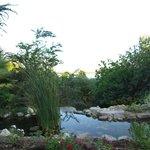 botanical gardens eilat 12