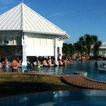 Swim-Up Bar in Main Pool