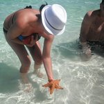 Star fish right on the beach, so amazing!