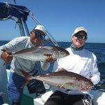 Great day panga fishing!!