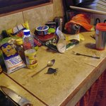 on est arrivé dans la cuisine commune pour manger le matin, nous étions les premières à l'utilis