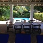 This is where we at every meal (love that awesome tree by the pool)
