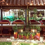 The Expert Massage & Spa