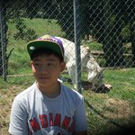 My son with white tiger.