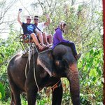 This is absolutly amazing and elephants very well looked after