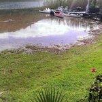 Garten vom Boathouse-Zimmer aus