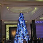 An impressive christmas tree to brighten the lobby