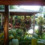 Salon de jardin (parfait pour l'apéro!)