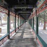 Длинный коридор в Императорском саду