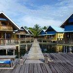Koko cabins