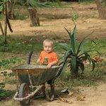 ребенку в зеленом саду раздолье