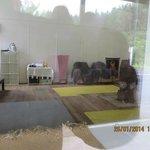 C to P 2014 Ohura shop window