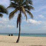 Paisagem Las Olas Beach I