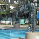 Marina Tower pool