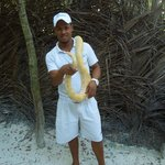 Dolphin excursion guy with a boa constrictor