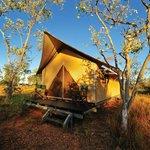 Private tented cabin