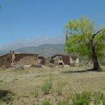Alrededores cercanos de Cabañas Andinas