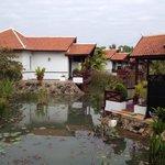 La vue des villas et terrasses sur le petit étang