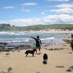 Swell Eco Lodge Mdumbi Beach Wild Coast