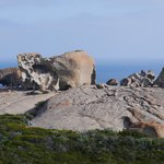 Remarkable Rocks (5-10min drive) - Photo does not do it justice